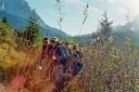 Ehrwalder Becken: Kinder im Schilf - Foto Christina Moser