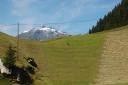 Alpine Landwirtschaft