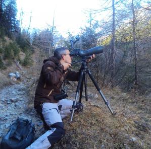 Beobachtung mit Swarovski Optik
